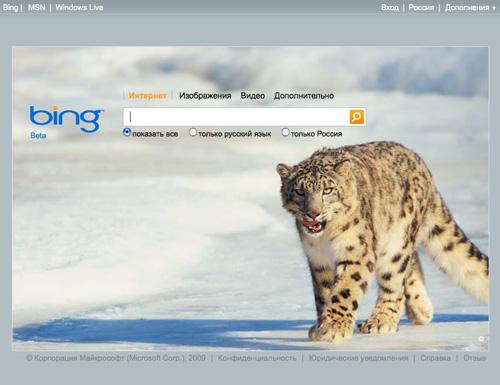 Bing - новый поисковик от Microsoft